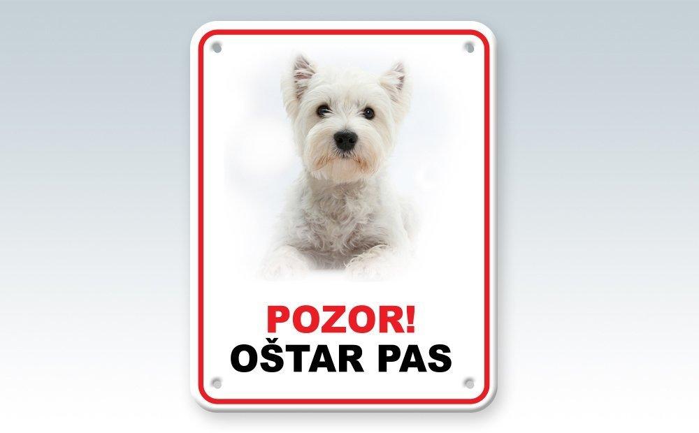 121_pas_1000x620