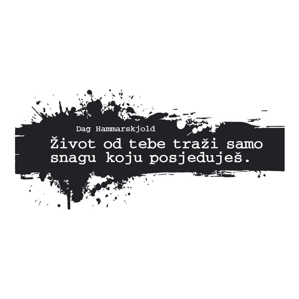 21_t_513
